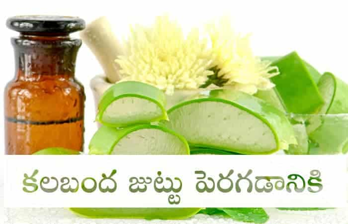 Aloe Vera for hair telugu