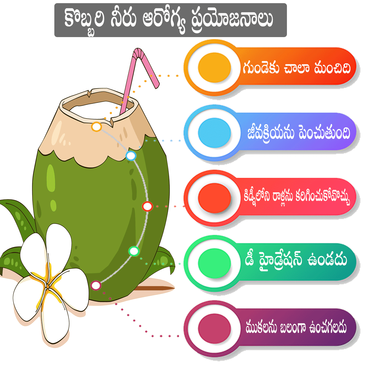coconut water benefits in telugu
