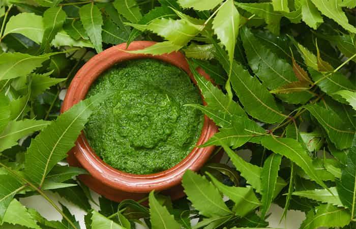 neem వేప