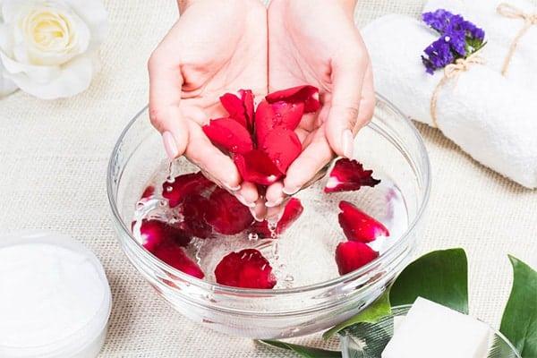 rose water senagapindi face pack