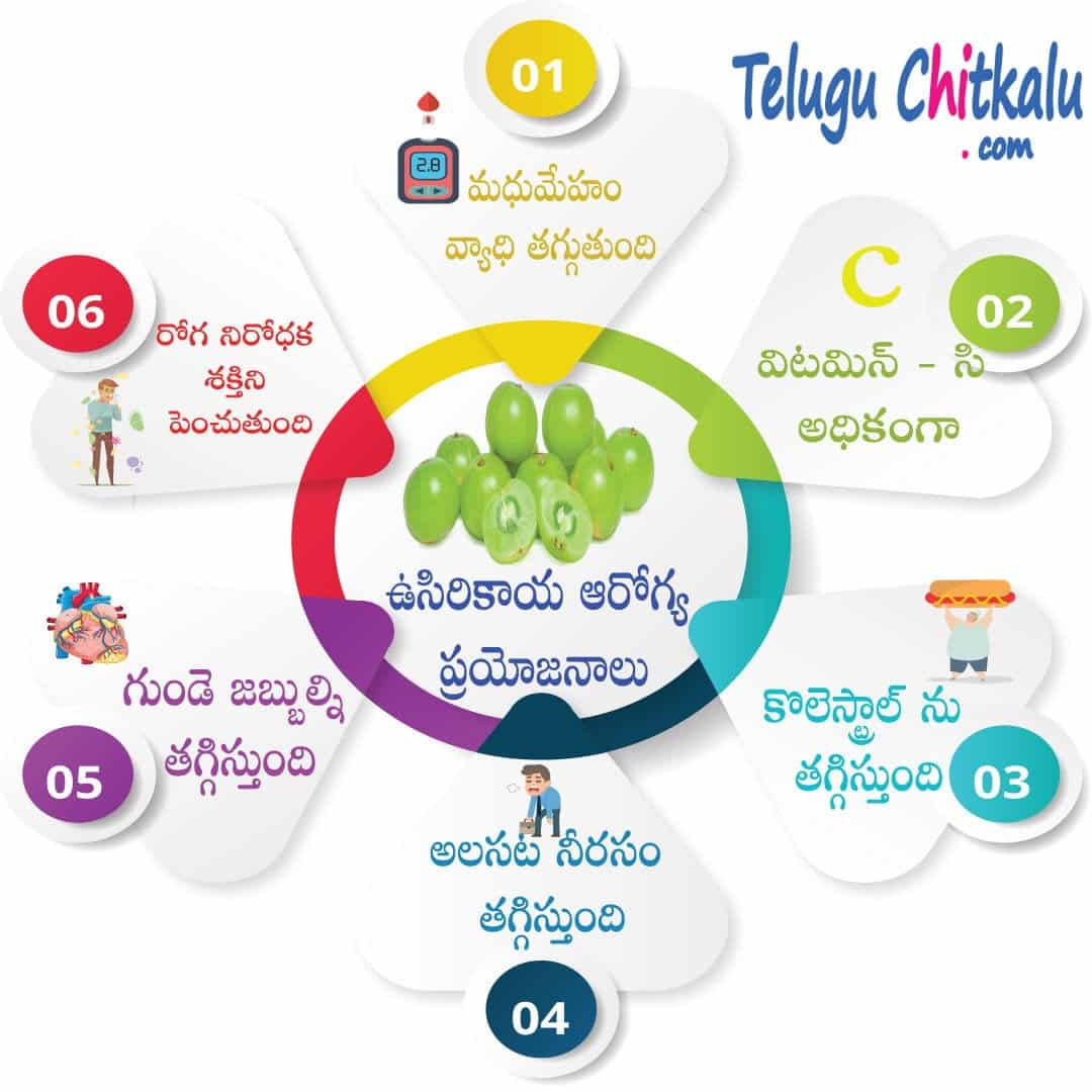 Health benefits amla telugu