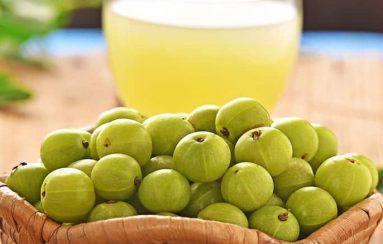 Indian gooseberry health benefits amla telugu