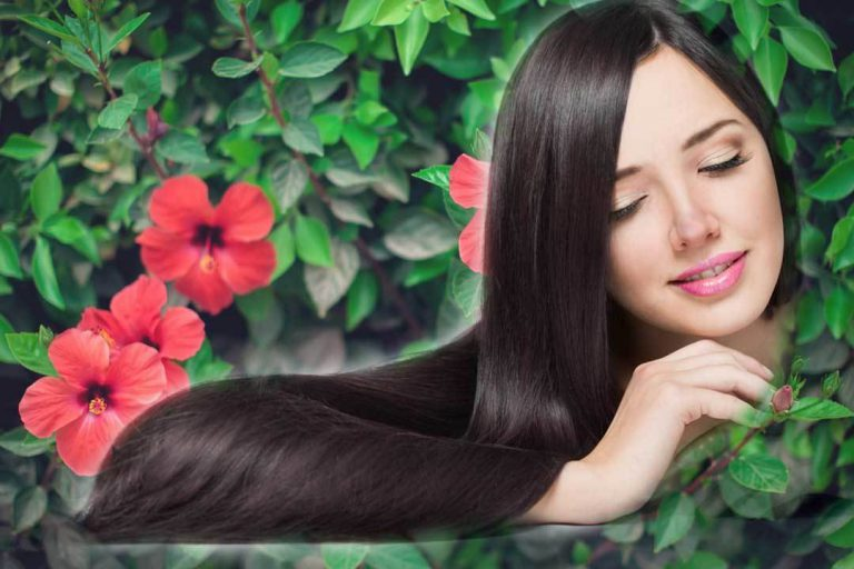 hibiscus-leaves-hair-growth-telugu